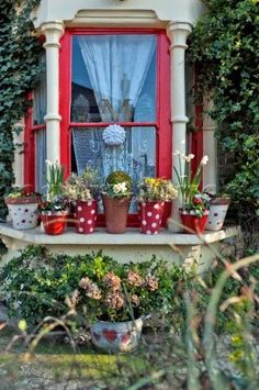 Red paintwork and pot plants on bay window of London home  England  UK