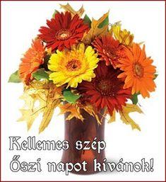 katalin: Áldott szép őszi hétvégét,napot kívánok! Kata Plants, Plant, Planets