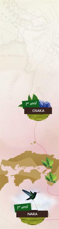 Follow the Hanami with SPECIAL.T Sakura Bloom, Osaka, Cherry Blossom, Japanese, Invitations, Spring, Flowers, Movie Posters, Art