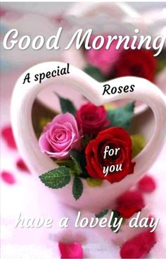If you want to send good morning love images to your friends and relatives then you have the best good morning images available on our website. Romantic Good Morning Messages, Good Morning Beautiful Pictures, Good Morning Images Flowers, Good Morning Roses, Good Morning Images Hd, Good Morning Gif, Good Morning Greetings, Good Morning Picture, Morning Pictures