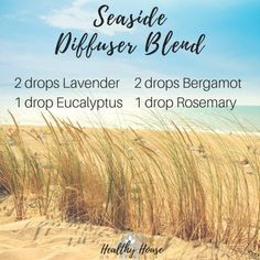 seaside diffuser blend with laveder essential oil, eucalyptus essential oil, bergamot essential oil, rosemary essential oil Essential Oils For Headaches, Essential Oils Guide, Essential Oil Diffuser Blends, Essential Oil Uses, Doterra Essential Oils, Young Living Essential Oils, Doterra Blends, Vanilla Essential Oil, Bergamot Essential Oil