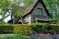Pam s English Cottage Garden  Peach Colored Blooms   Beautiful     English Cottage Style Homes   Pictures Old English Cottages submited images    Pic2Fly