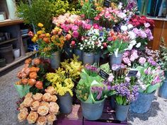 Flowers, flowers, flowers by NWY69, via Flickr