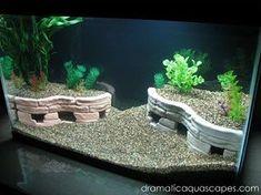 Diy Fish Tank Decor Beautiful Dramatic Aquascapes Diy Aquarium Decore Stone Terraces – All About DIY Planted Aquarium, Aquarium Aquascape, Diy Aquarium, Aquarium Design, Aquariums, Aquarium Terrarium, Nature Aquarium, Aquarium Fish Tank, Aquascaping