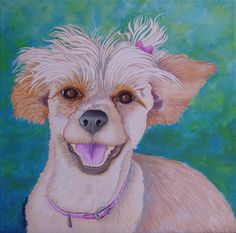Check out this entry in Fur & Feathers Animal Portrait Contest!!