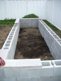 concrete blocks make raised beds -- plant marigolds in the openings on the side.