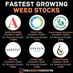 Stock Market Investing, Investing In Stocks, Investing Money, Dividend Investing, Business Money, Business Ideas, Investment Tips, Cannabis, Financial Success