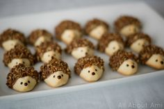 Hedgehog Cookies (Woodland Creature Birthday Party) Would also be ideal for a woodland or forest animal themed baby shower!