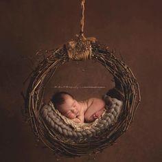 Image of Gorgeous, PNW Uniquely Hand Crafted, Newborn Grape Vine Hammock/Dream Catcher
