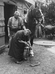 """March Mrs Elizabeth Arnold, believed to be England's only woman blacksmith, shoes a horse outside the forge in Walmer, Kent. (Photo by Fox Photos). Vintage Cowgirl, Vintage Horse, Vintage Farm, Photos Vintage, Vintage Photographs, Old Pictures, Old Photos, Films Western, Draft Horses"