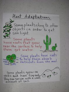 Plant Adaptations...this could be helpful next week!