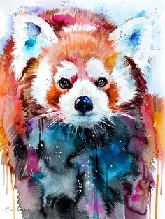 Red panda by Slaveika Aladjova | Red panda watercolor painting print, animal watercolor, animal art, animal portrait, Red panda art, Red panda painting, Red panda print. Click through for prints of this artwork (cards, phone cases etc.)!