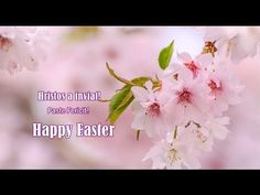 Hristos a Inviat! Happy Easter, Beautiful Flowers, Past, Make It Yourself, Gifs, Tattoo, Watches, Youtube, Cards