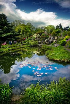 Oslo Botanical Garden, Norway