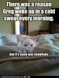 There was a reason Beka woke up in a cold sweat every morning. And it's name was Gracie Ruth.