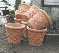 beautiful terracotta