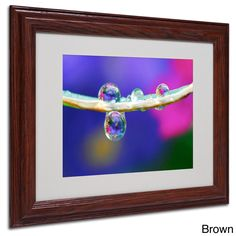 Steve Wall 'Double Drops' Framed Matted Art