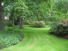 Acreage Landscaping, Outdoor Landscaping, Front Yard Landscaping, Outdoor Gardens, Cottage Garden Plants, Garden Spaces, House Landscape, Garden Landscape Design, Sacred Garden