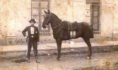 FELICIANO DIAZ. Gaucho, Country Life, Horses, Posters, Animals, Block Prints, Antique Photos, Art, Argentina