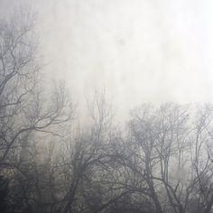 *<3 fog surrenders ....