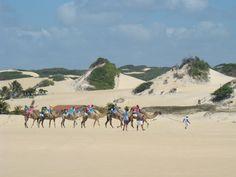 Dunas de areia em Natal - RN - Brasil   #Walking with camels