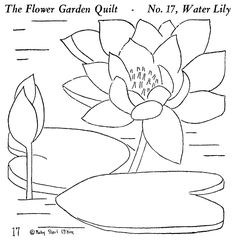 Flower Garden Quilt 17 - The Water Lily | Flickr - Photo Sharing!