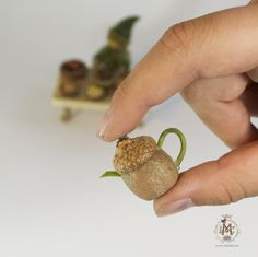 Willodel: MAKING FAIRY & GNOME DISHES WITH SEEDPODS