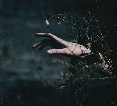 © Natalia Drepina