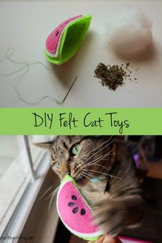 Easy embroidered felt cat toys filled with catnip. Perfect gift for the feline f… Easy embroidered felt cat toys filled with catnip. Perfect gift for the feline fanatics in your life. Easy and fun DIY craft using your Cricut or cutting with scissors.