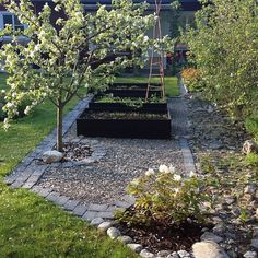 UTEMILJÖ: Inspirerande trädgård med stor charm och personlighet. Skapas med hjälp av flera olika sorters stenar och grus, härliga vitblommande buskar och träd samt svartmålade pallkragar med odlingar. Vackert! Tack @carisands för att du taggade #renoveringsdamm