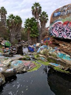 Street art meets the jungle at Adobe Falls in San Diego! This is a fun little hike.