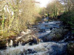 River Erme in Ivybridge.