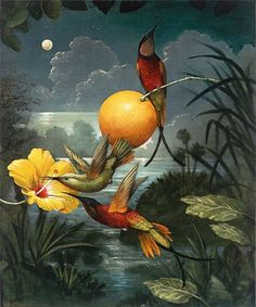 Kevin Sloan. Hummingbirds and hibiscus at night. Lovely.