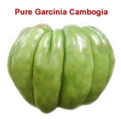 Can garcinia cambogia and metformin be taken together picture 6