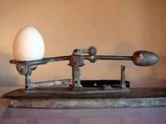 Egg Scale- I am going to keep my eyes open for one of these
