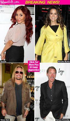 'Celebrity Apprentice' Cast Revealed: Snooki, Porsha Williams & More — FullList