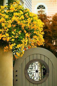 garden gate in Charleston, SC