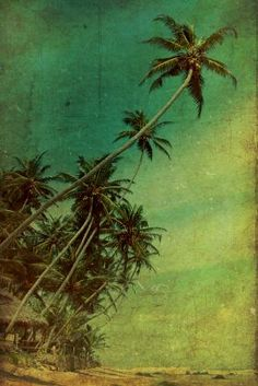 prints on metal Landscape sri lanka beach hut palm tree warm tropical summer water sand nature asia vintage brown green yellow