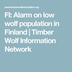FI: Alarm on low wolf population in Finland   Timber Wolf Information Network