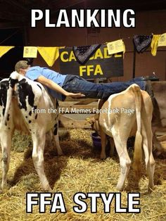 Planking - FFA style....what happens at the Ag center stays at the Ag center!!!