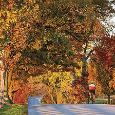 This image may be of fall but there is nothing like the Kentucky Bourbon Trail in the Spring time! #happinessday