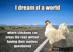 I dream of a world where chickens can cross the road without having their motives questioned. Wtf Funny, Funny Memes, Jokes, How Do I Get, Fun To Be One, Word Structure, Aba, Blame, Chistes