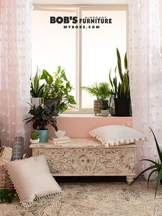 """Let it grow! it's time to toss those fake things, real plants are in! """"We like to use real plants on our sets because each one is unique and brings its own personality and life to a space."""" Catch up on 2020 decor trends with my expert style team. Fake Plants Decor, Real Plants, Plant Decor, Coffee Table Books, Bold Prints, Home Decor Trends, Discount Furniture, Modern Furniture, Living Spaces"""