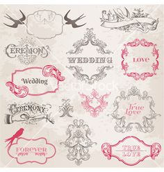 Wedding vintage frames and design elements vector 901813 by woodhouse84 | Royalty Free Vector Art, Vector Graphics & Clipart | VectorStock®.com