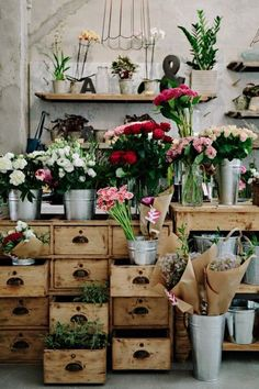 the little flower shop cafe - Google Search