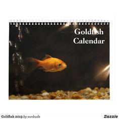 Shop Goldfish 2020 calendar created by sunbuds. Event Template, Presentation Layout, 2019 Calendar, Sphynx, Animal Skulls, Tropical Fish, Aquarium Fish, Goldfish, Holidays And Events