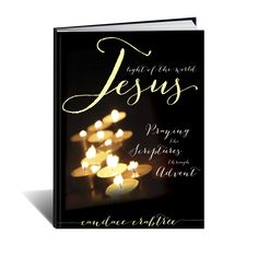Praying the scriptures through ADVENT! Short devotions and scriptures for the Advent season.