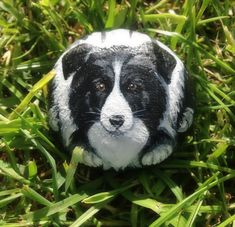 Painted pebble of Border Collie