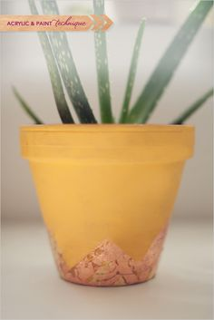 diy ideas on how to decorate your terra cotta pot http://www.weddingchicks.com/2013/10/31/diy-terra-cotta-pots/