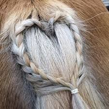 Horse tail braid in a heart.